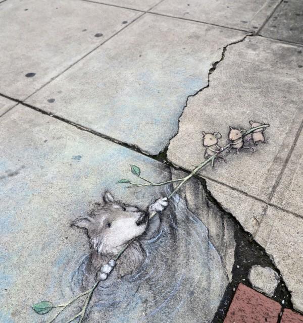grey_wolf_rescued_by_david_zinn_800w